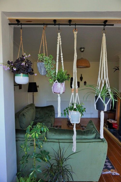 Clever Ways to Hang Your Plants 12