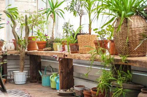 Create a Tropical Garden Oasis in a Balcony With These Ideas 11
