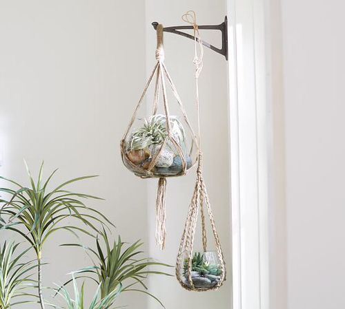 Clever Ways to Hang Your Plants 11