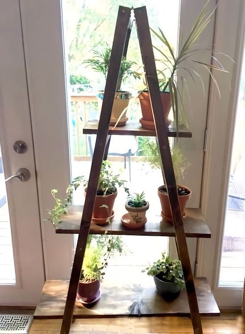 DIY Indoor Plant Shelves Ideas 2
