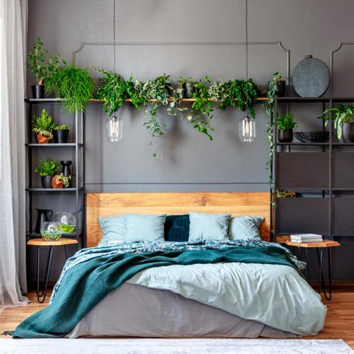 Plant Headboard Ideas for Ultimate Houseplant Lovers 2
