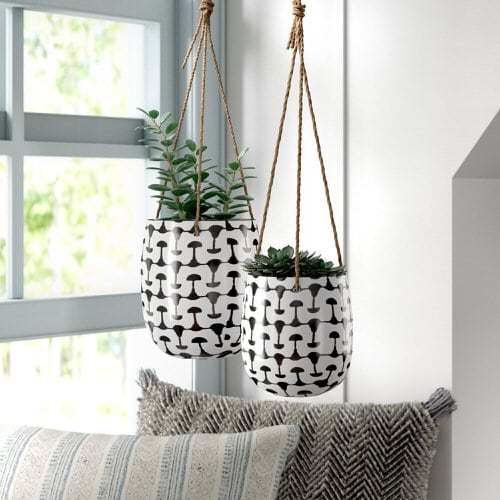 Clever Ways to Hang Your Plants 3