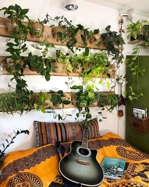 Plant Headboard Ideas for Ultimate Houseplant Lovers 3