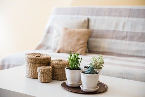 Extremely Beautiful Drawing Room Décor Ideas with Succulents 3
