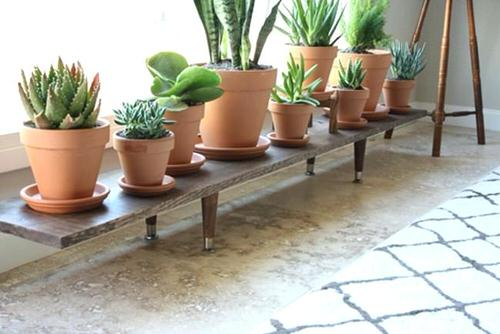DIY Indoor Plant Shelves Ideas 3