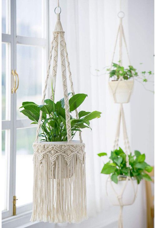 Clever Ways to Hang Your Plants 10