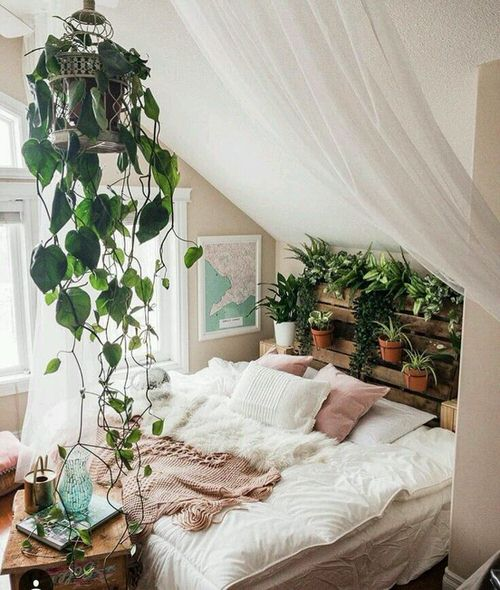 Plant Headboard Ideas for Ultimate Houseplant Lovers 4