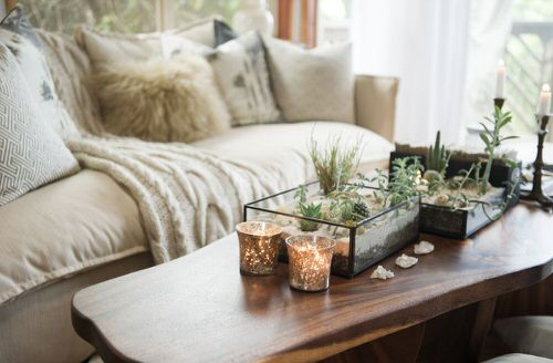 Extremely Beautiful Drawing Room Décor Ideas with Succulents 4