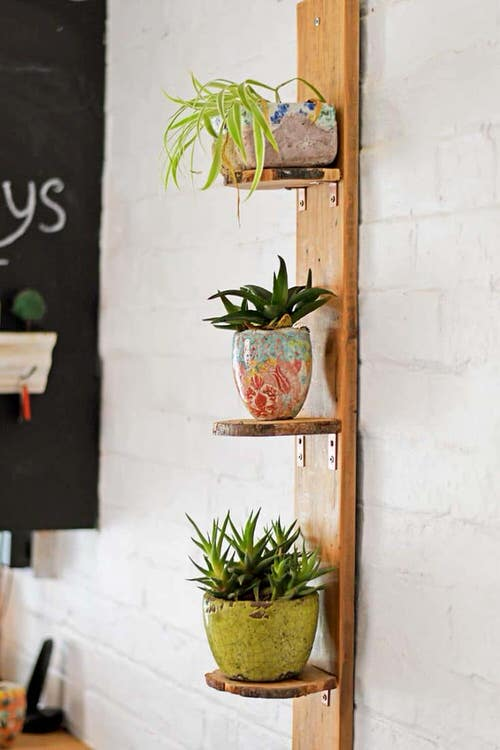 DIY Indoor Plant Shelves Ideas 4