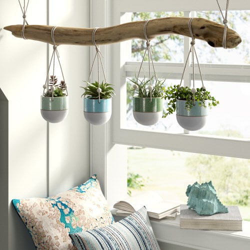 Clever Ways to Hang Your Plants 4