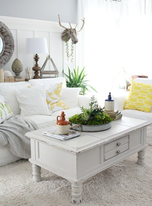 Extremely Beautiful Drawing Room Décor Ideas with Succulents 5