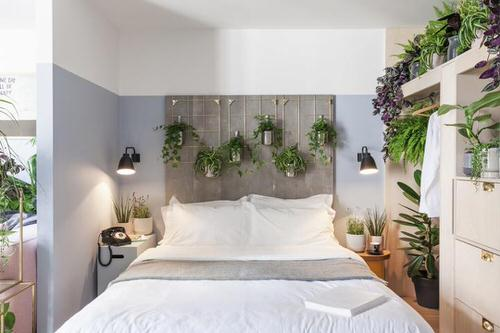 Awesome Indoor Plant Bedroom Pictures 8