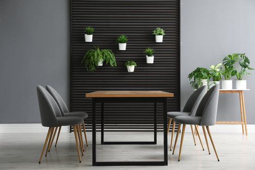Pictures of House Plants in the Dining Room