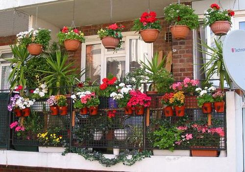 The Best Decorated Small Outdoor Balconies on Pinterest 10