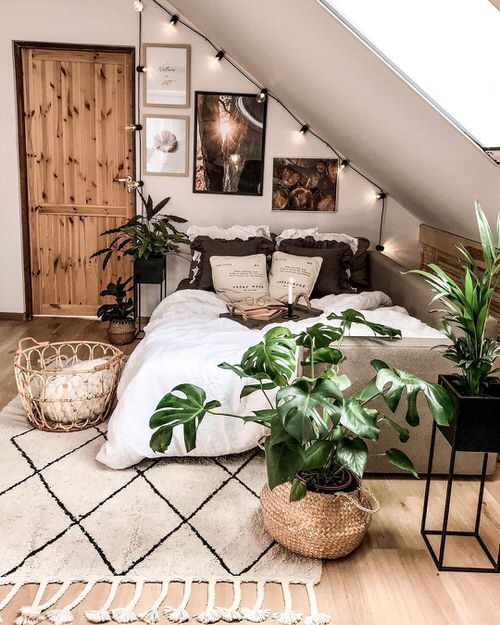 Stunning Attic Rooms with Plants Pictures