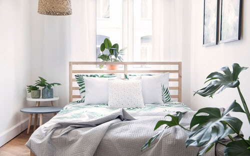 Awesome Indoor Plant Bedroom Pictures