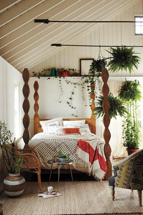 Awesome Indoor Plant Bedroom Pictures 12