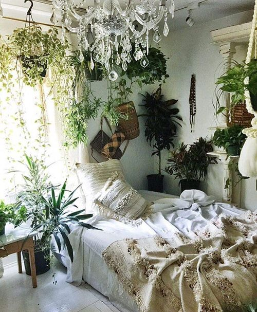 Awesome Indoor Plant Bedroom Pictures 13