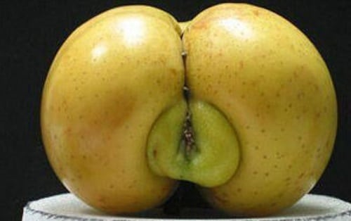 Fruits and Vegetables That Look Like Something Else 10