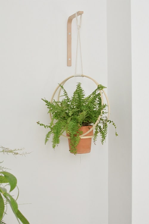 DIY Indoor Plant Display Ideas 8