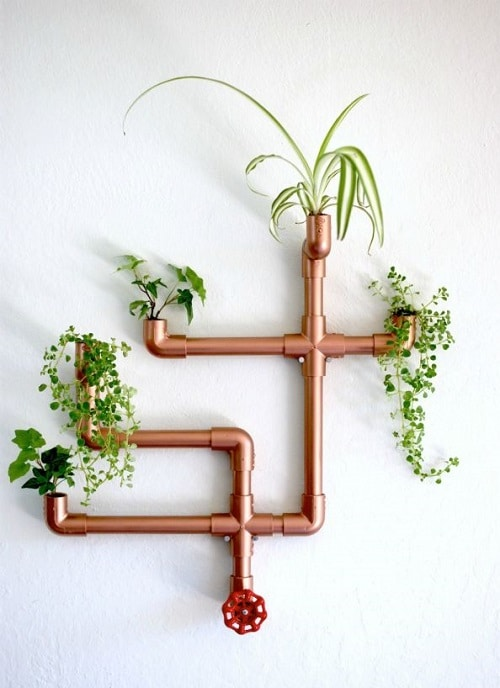 DIY Indoor Plant Display Ideas 9