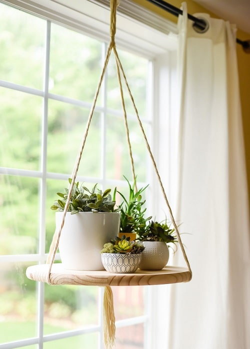 DIY Indoor Plant Display Ideas 10