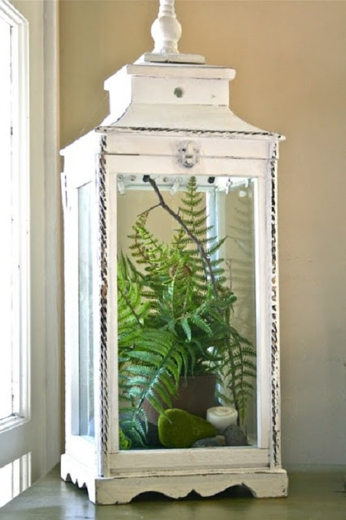 DIY Indoor Plant Display Ideas 2