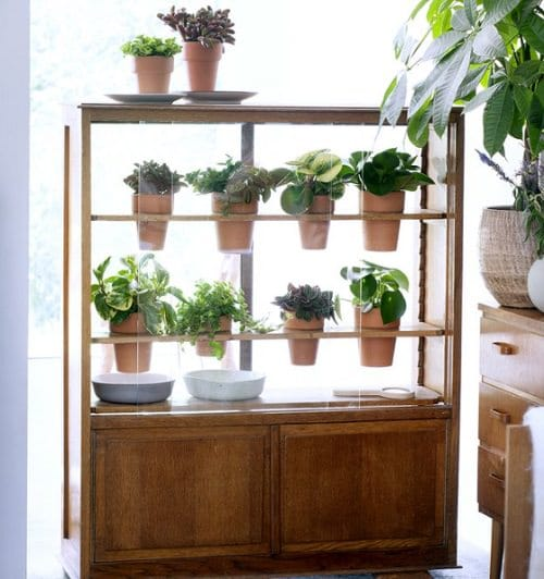 Old Plant Cabinets into Plants Home