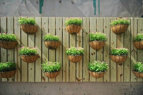 Old Wooden Boards Used to Create Brilliant Vertical Gardens