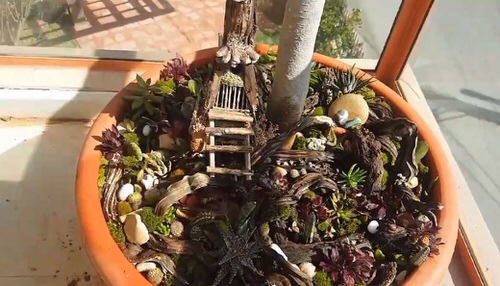 DIY Miniature Fairy Garden Ideas 25