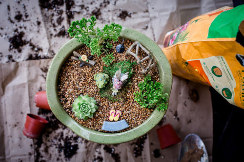 DIY Miniature Fairy Garden Ideas 27