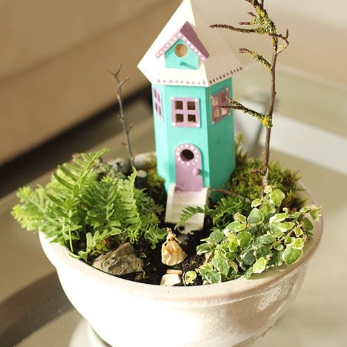 DIY Miniature Fairy Garden Ideas 5