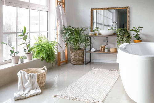 Pictures of Bathroom with Plants