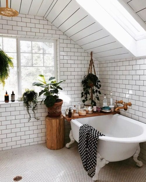 Pictures of Bathroom with Plants 11