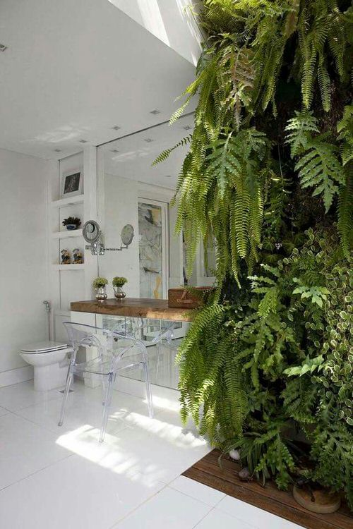 Pictures of Ferns in Bathroom 11