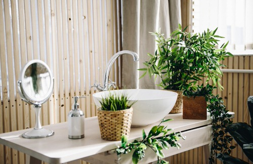 Pictures of Bathroom with Plants 2