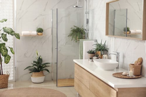 Pictures of Ferns in Bathroom 2