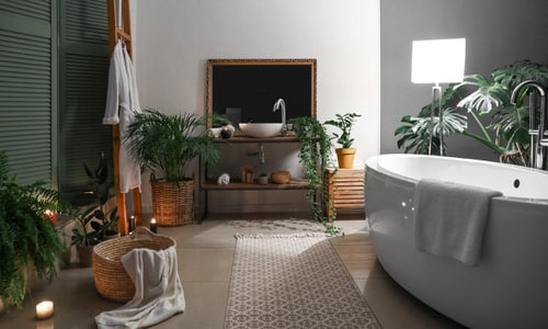 Pictures of Bathroom with Plants 3