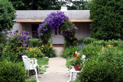 Beautiful Ideas with Clematis in the Garden 7