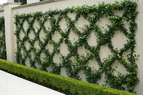 Landscaping Ideas for Long and Narrow Gardens 2