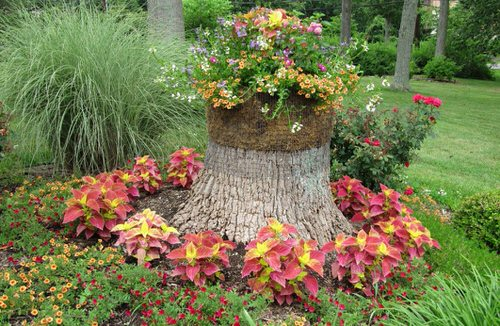 Amazing Flower Bed Ideas for Your Home Garden 4