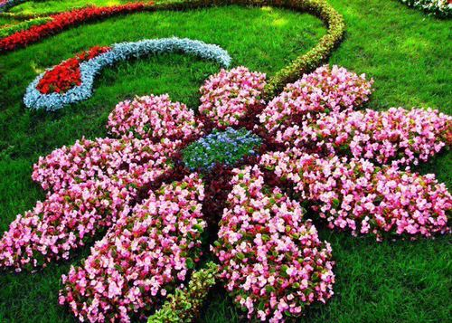 Amazing Flower Bed Ideas for Your Home Garden 6