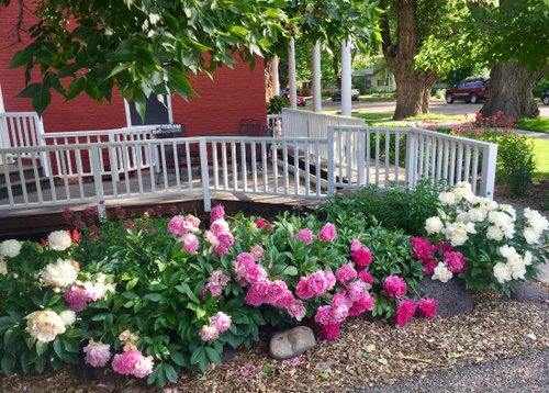 Amazing Flower Bed Ideas for Your Home Garden 11