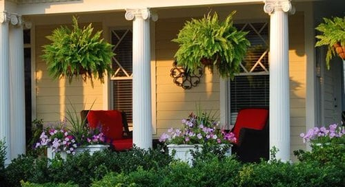 Front Porch Decoration Ideas with Ferns