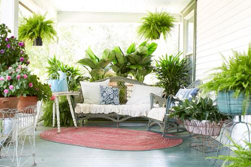 Front Porch Decoration Ideas with Ferns 3