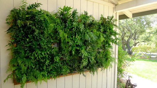 Front Porch Decoration Ideas with Ferns 6